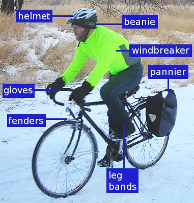 Bicycle commuter anatomy